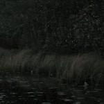Jomfrulandserien 005 / 2010